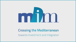 Master's Degree in Intermediterranean Mediation: Economic Investment and Intercultural Integration